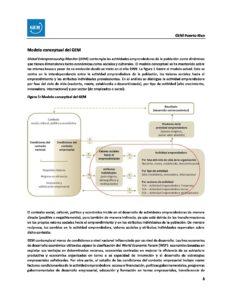 Modelo y metodologia 2017 GEM Puerto Rico
